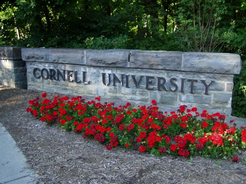 cornell-university-alumni